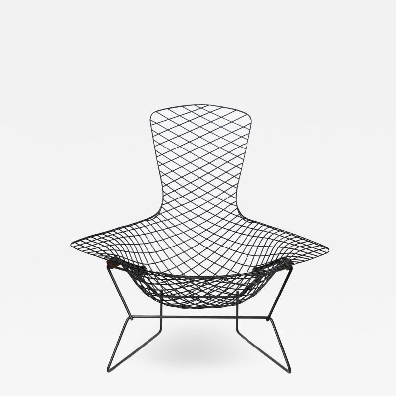 Knoll Early Bertoia Bird Chair in Outdoor Grade Powdercoat by Harry Bertoia for Knoll