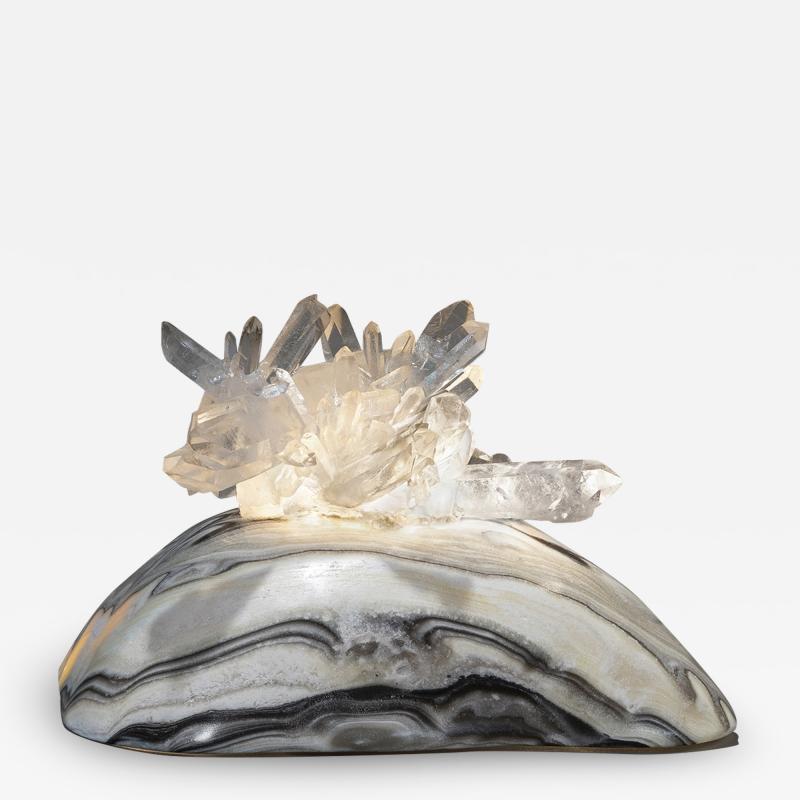 Studio Greytak Turtle Aragonite Shell Formed Lighted Sculpture