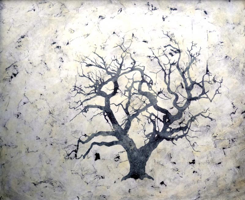 Bill Zima Sea Of Trees