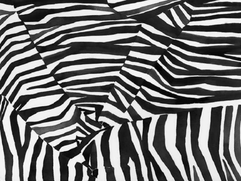 Brett Design Zebra