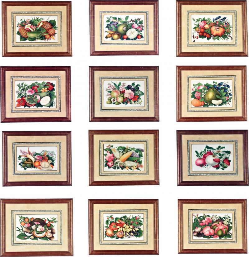 China Trade Watercolor and Gouache Set of Twelve Paintings of Fruit and Flowers