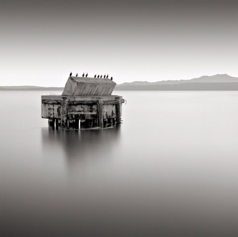 David Fokos Ten Cormorants Port Townsend Washington 2002