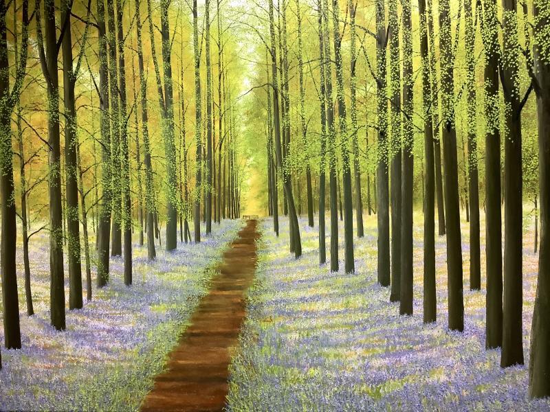 David J Williams Bluebell Wood