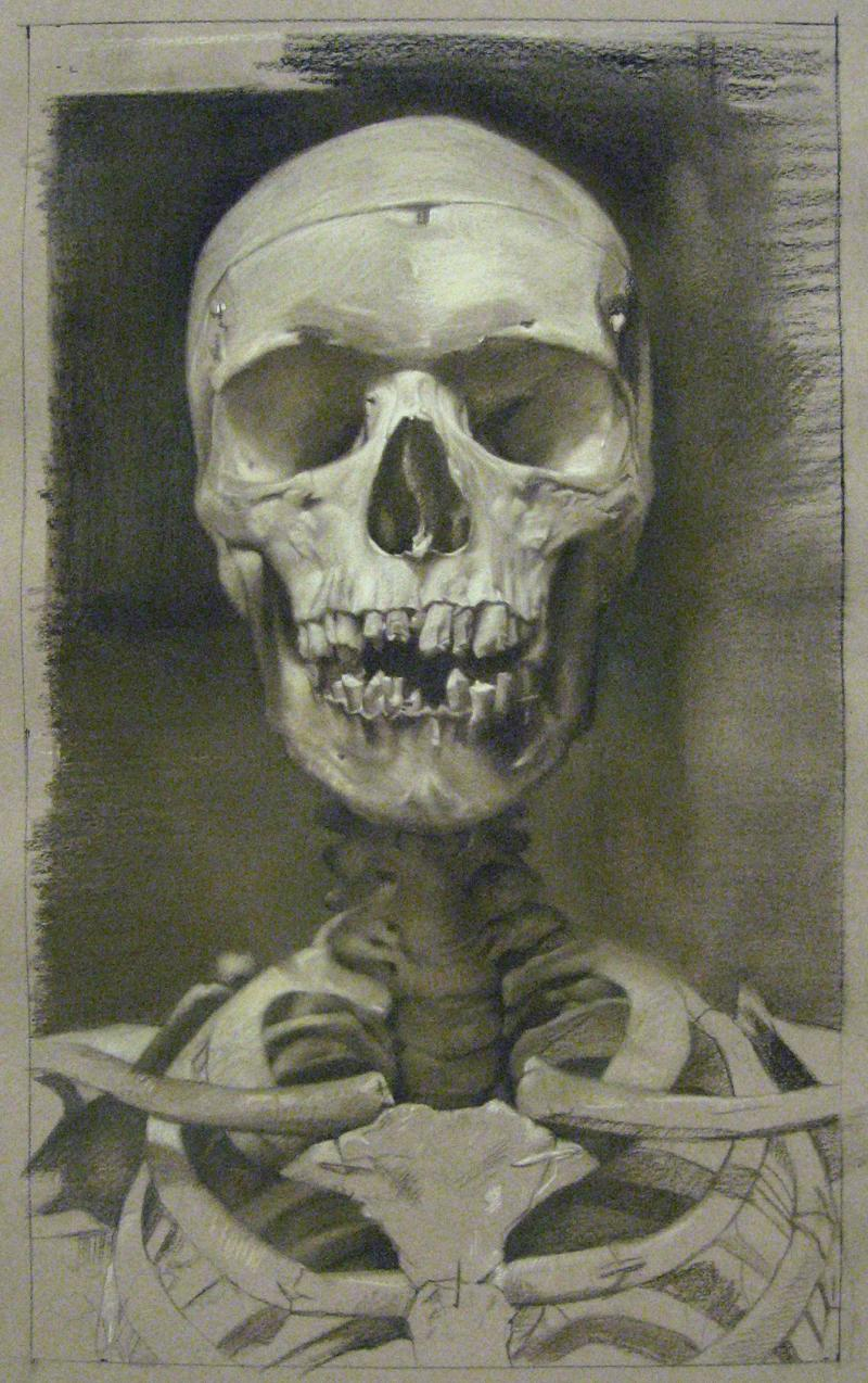 David Kassan Anatomy Study in Sepia