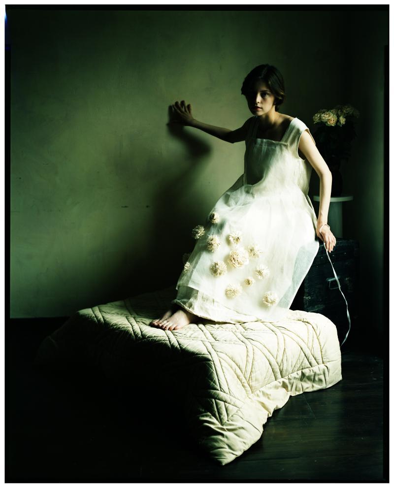 Diana Lui The Wedding Dress
