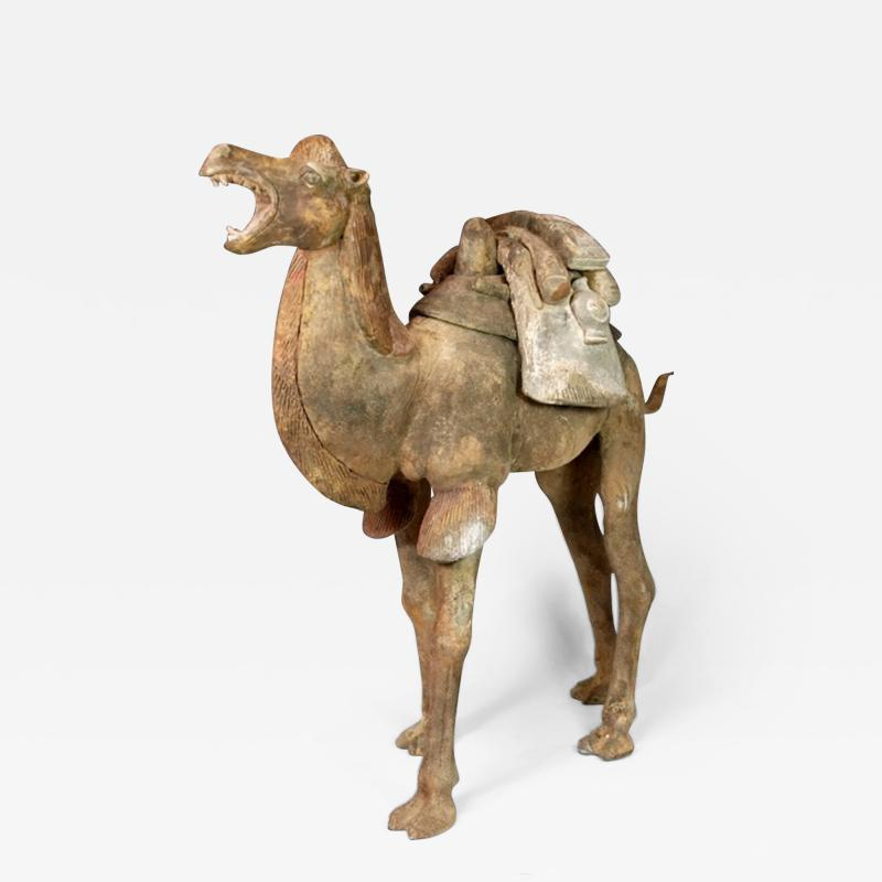 Early Tang Dynasty Camel