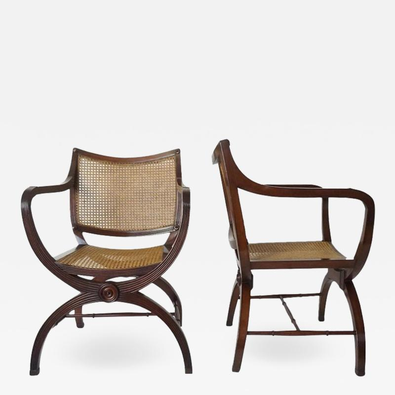 English Regency Style Mahogany and Cane Curule Form Armchairs