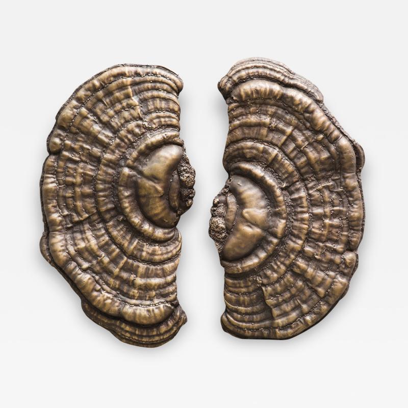 Erin Sullivan Flora Series Bronze Mushroom Door Pulls USA