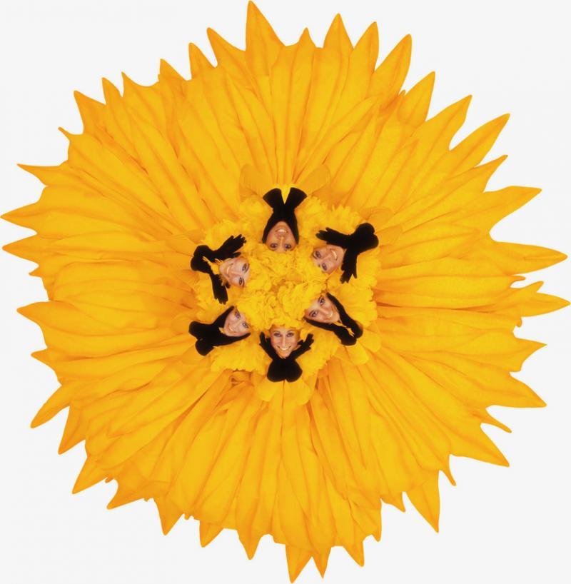 Howard Schatz Fashion Flowers Sunflower