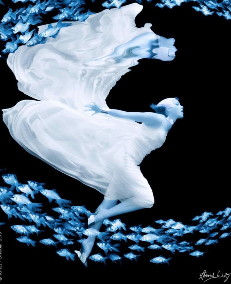 Howard Schatz Underwater Study 5080 Atlantis 1