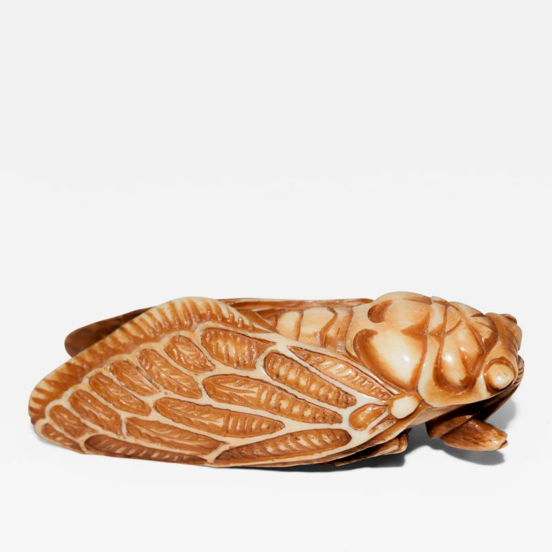 Japanese Netsuke of Cicada Signed