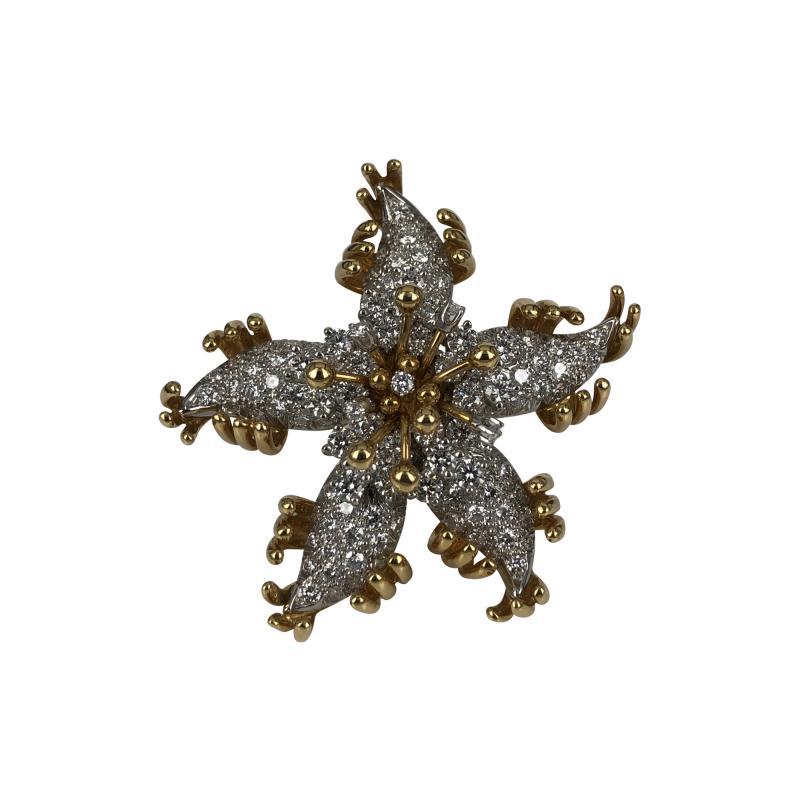 Jean Michel Schlumberger Schlumberger Star brooch