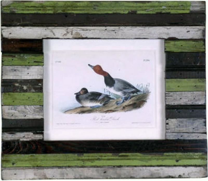 John James Audubon John James Audubon Red headed Duck 1856