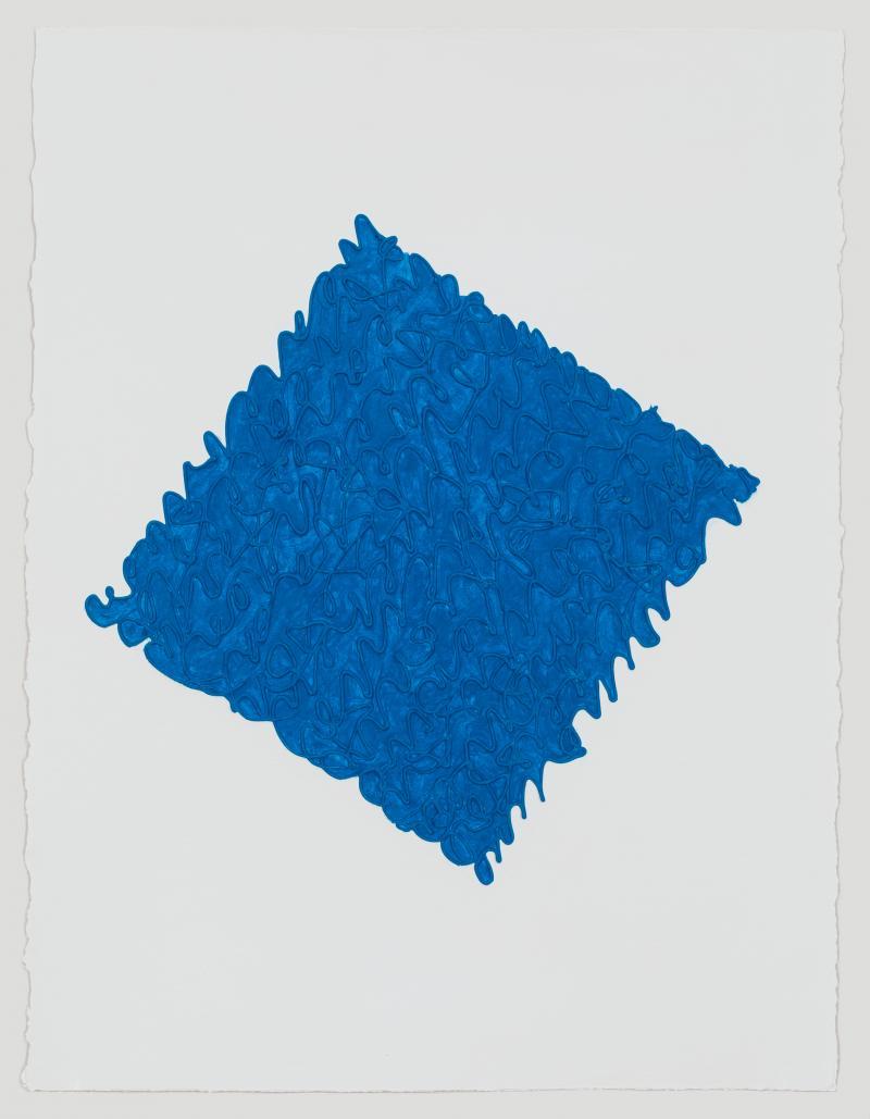 Louise P Sloan PT Blue
