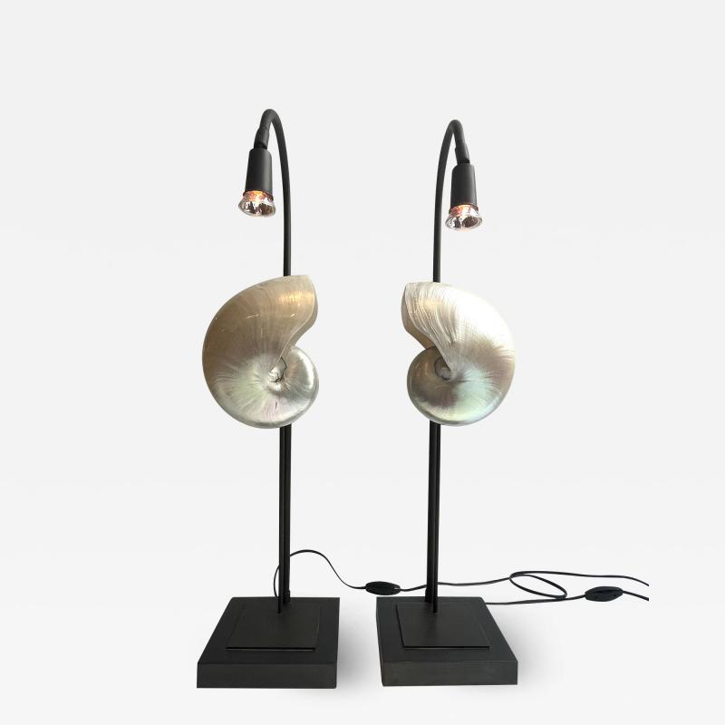 Pair of Nautilus Shell Table Lamps