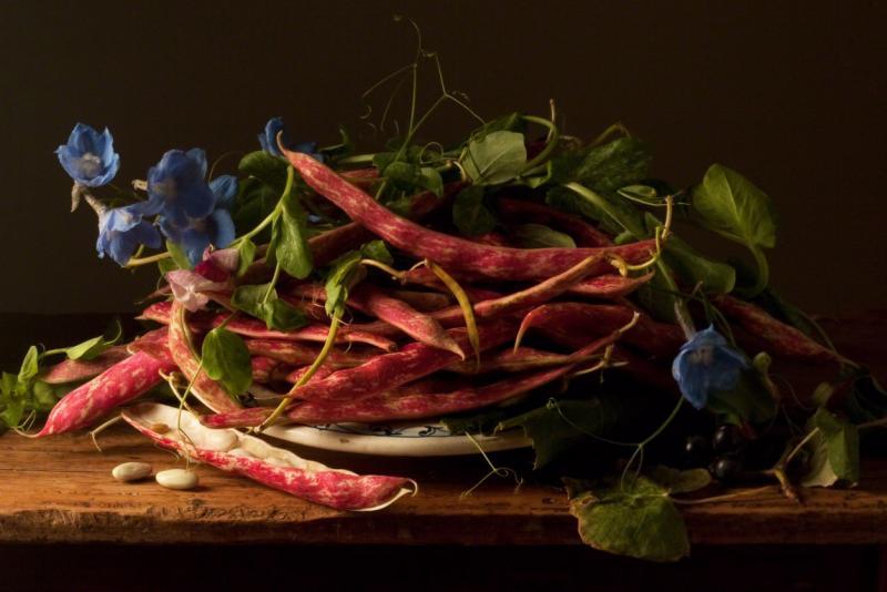 Paulette Tavormina Cranberry Beans after G G 2009