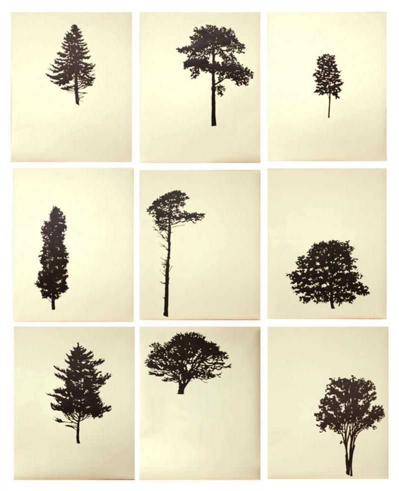 Peter Hoffer Der Wald portfolio of 9 4 of 12