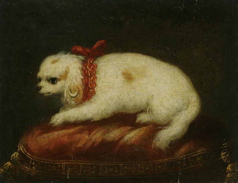 Pierfrancesco Cittadini A Portrait of a Maltese Sitting on a Cushion