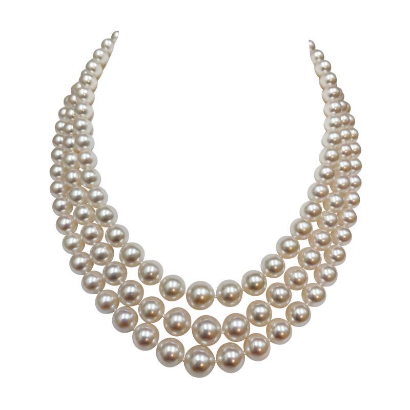 Rare triple strand of Akoya Japanese pearls