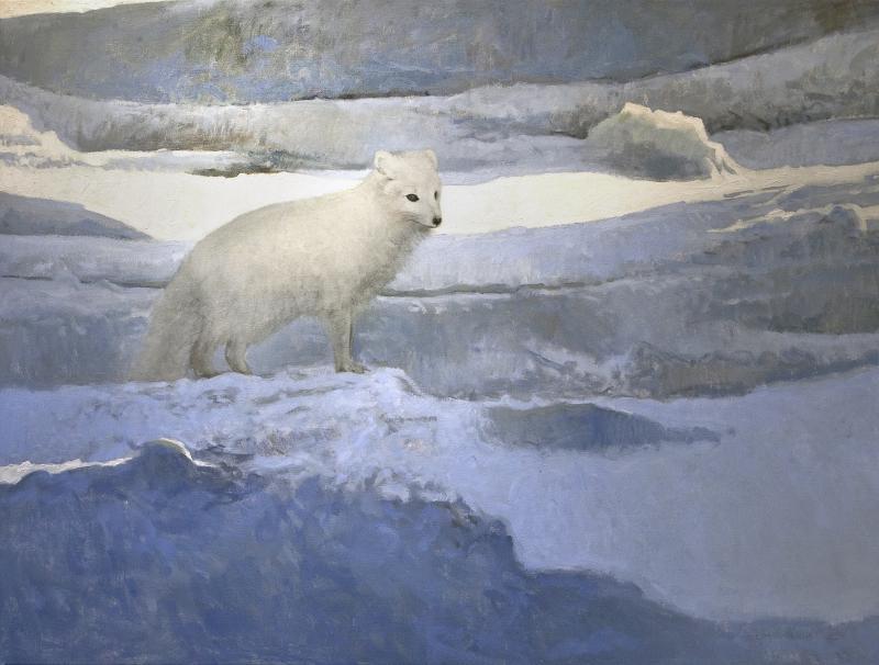 Ron Kingswood Arctic Fox