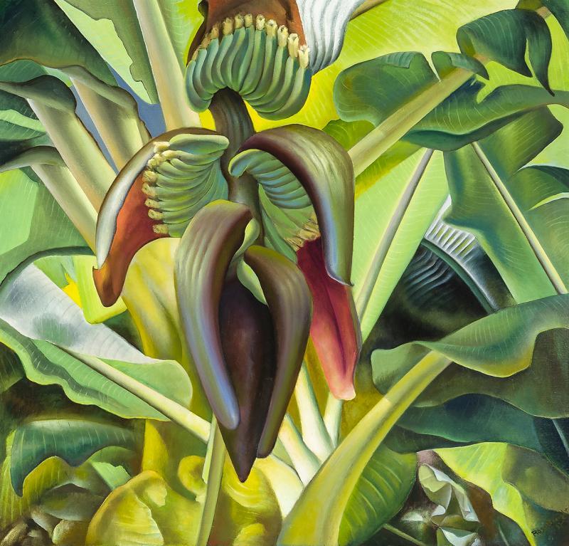 Ross Eugene Braught Banana Tree
