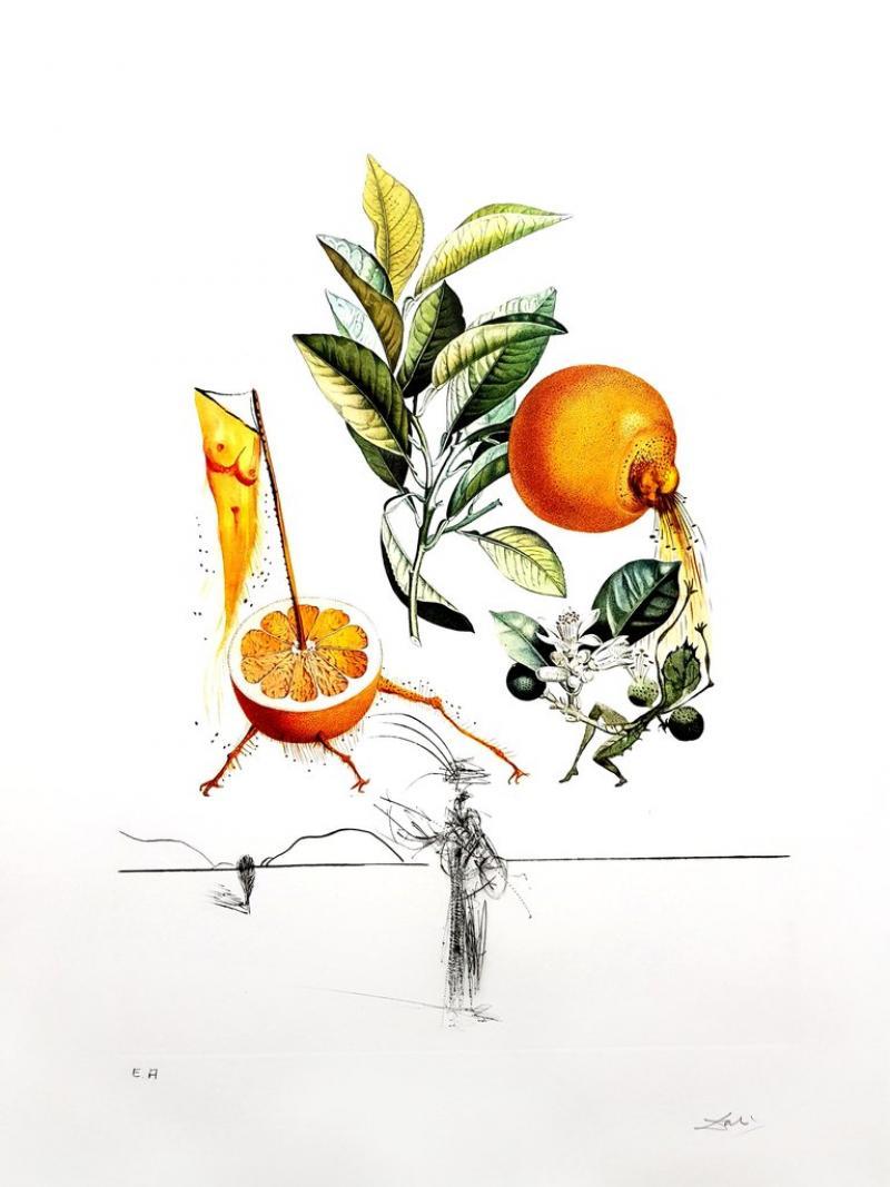 Salvador Dal Salvador Dali Erotic Grapefruit Original Hand Signed Lithograph