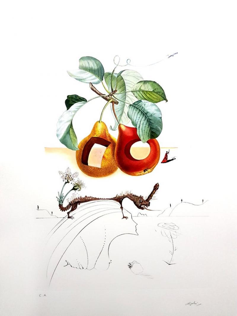 Salvador Dal Salvador Dali Fruits With Holes Original Hand Signed Lithograph