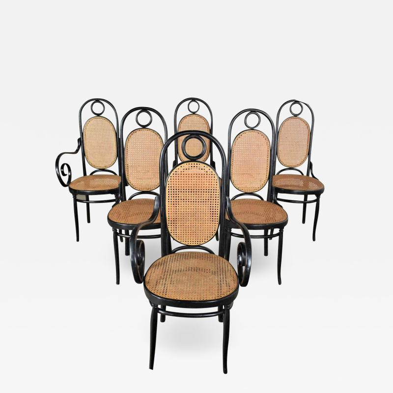 Salvatore Leone Set of 6 17 gebruder thonet style black natural tall bentwood chairs