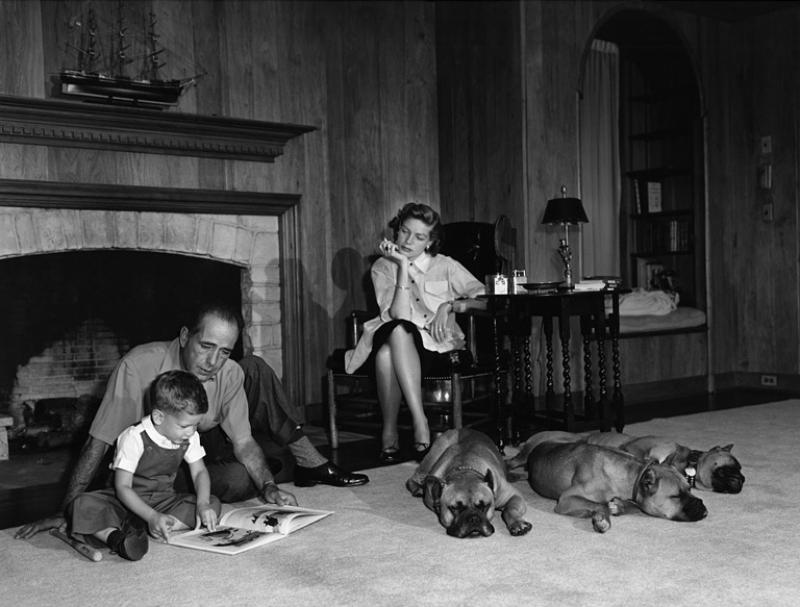 Sid Avery Humphrey Bogard Laurent Bacall and their Son Stephen with their Pet Boxers