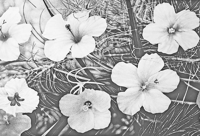 Steven Bitteroff American 20th century Flowers 5 Acrylic on canvas