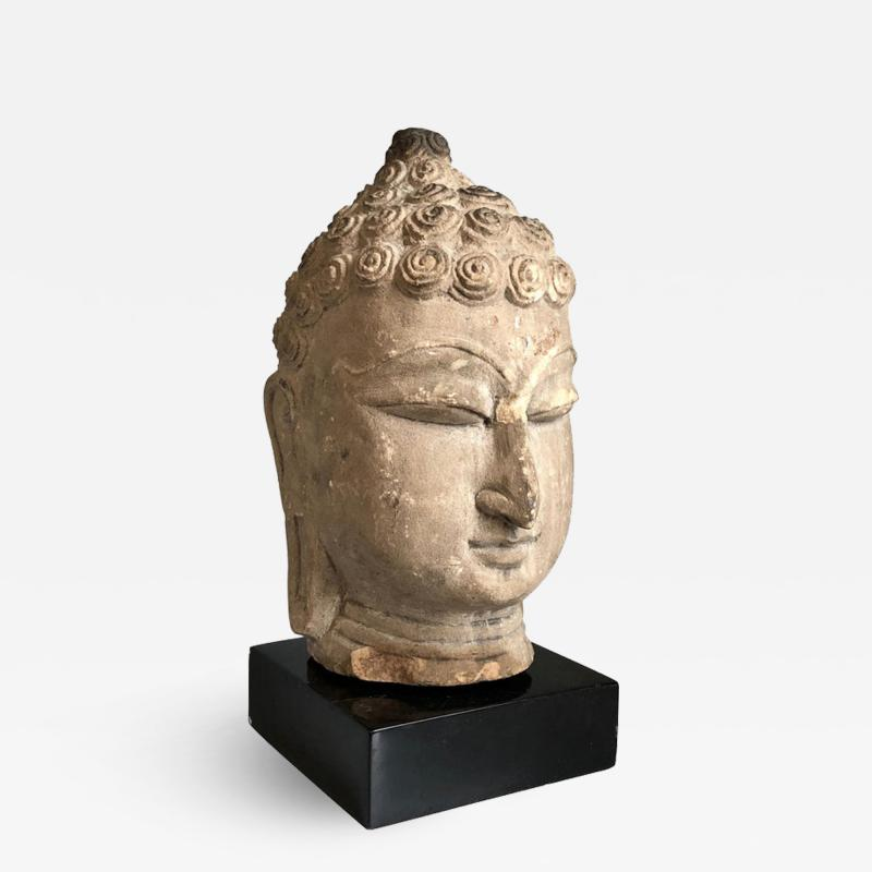 Thai Buddha Head Ayutthaya Period