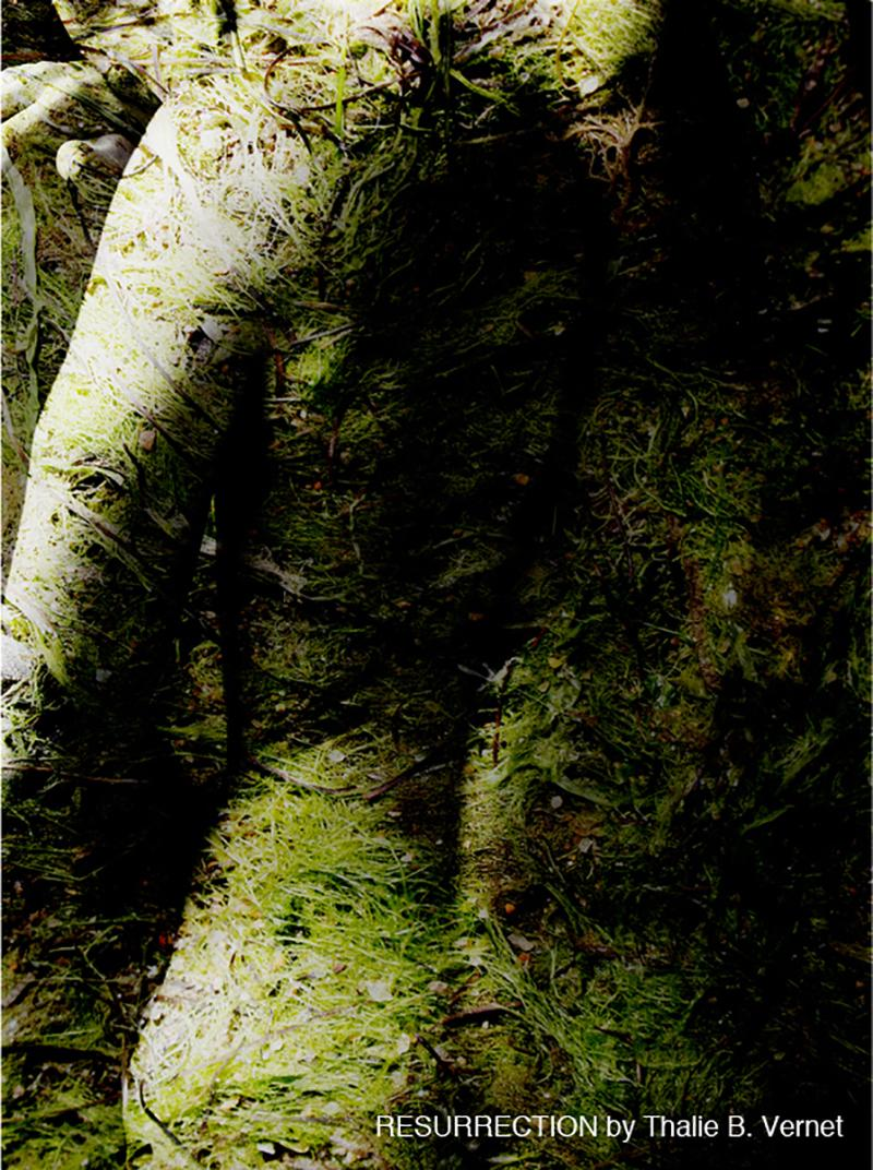 Thalie B Vernet de Beaulieu DOLORIS RESURRECTION Photography