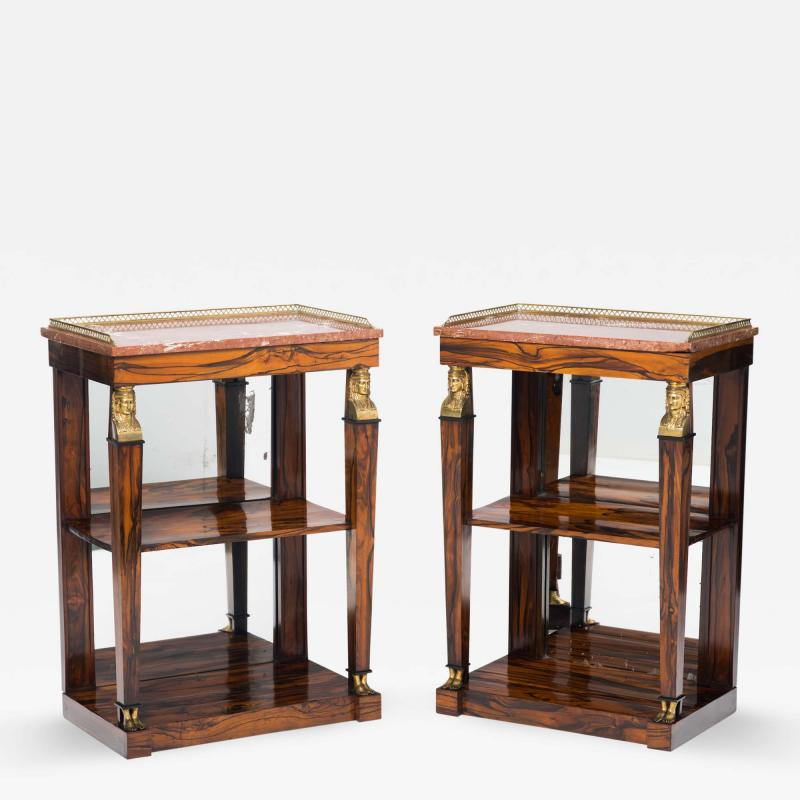 Two Regency Calamander Marble Top and Mirror Backed Open Bookcases