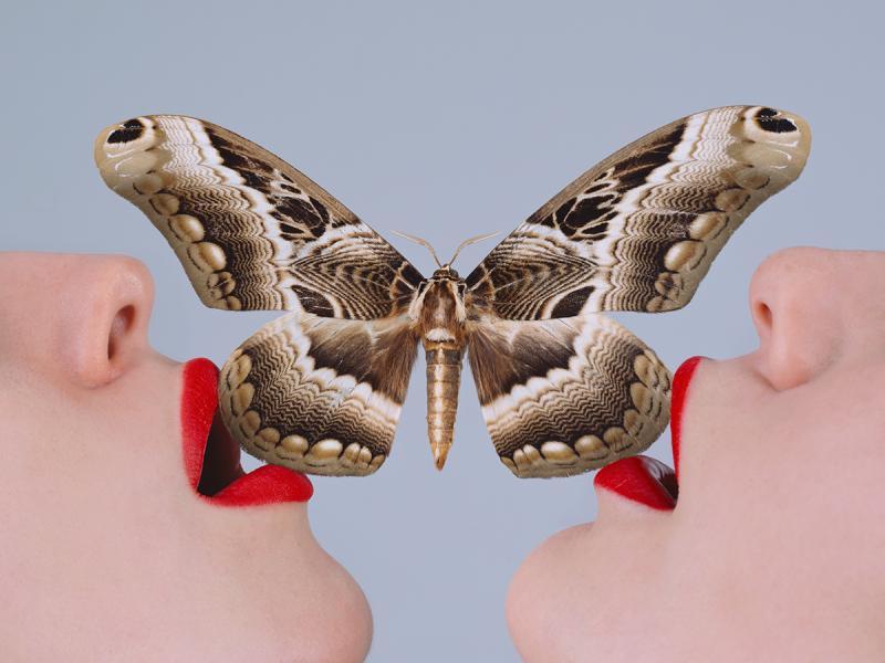 Tyler Shields Butterfly