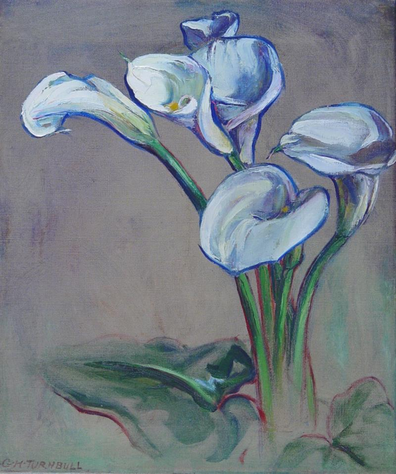 Grace Hill Turnbull Calla Lily Bermuda c 1920