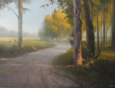 Assis Paisagem Landscape