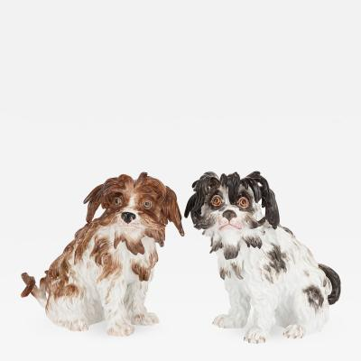Meissen Porcelain Manufactory Pair of antique Meissen porcelain models of Bolognese terriers