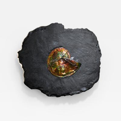 Studio Greytak Studio Greytak Ammonite on Bronze Ammonite and Mirror Polished Bronze Wall Art
