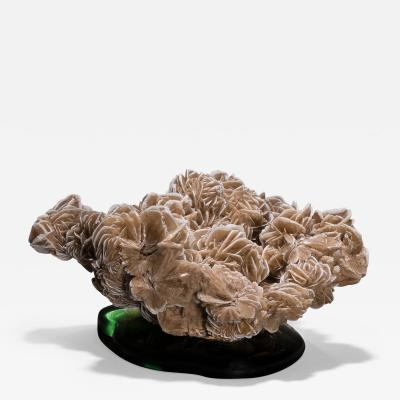 Studio Greytak Studio Greytak Desert Rose Gypsum on Cast Glass Desert Rose Green Cast Glass