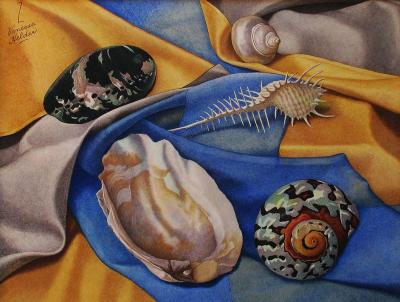 Zama Vanessa Helder Sea Shells Blue and Gold
