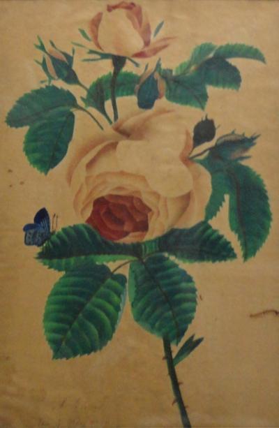 1839 Watercolor Theorem