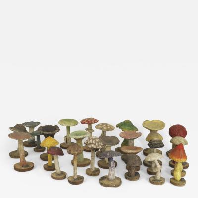 19 Enlarged Models of a Variety of Wild Mushrooms