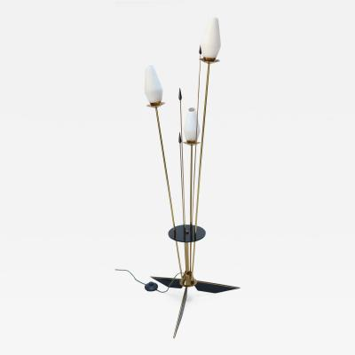 1950s French Brass and Black Metal Floor Lamp