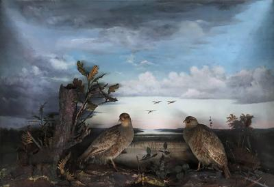 19th Century Taxidermy Diorama of Grey Partridges with Oil Painting