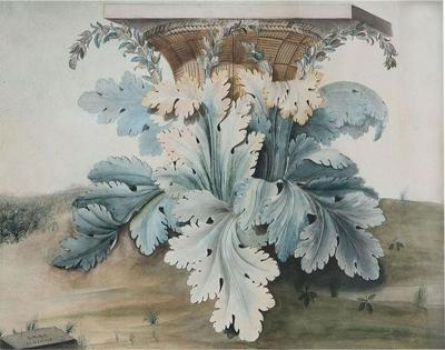A Watercolor Of The Origin Of The Corinthian Column After Giacondo Albertolli