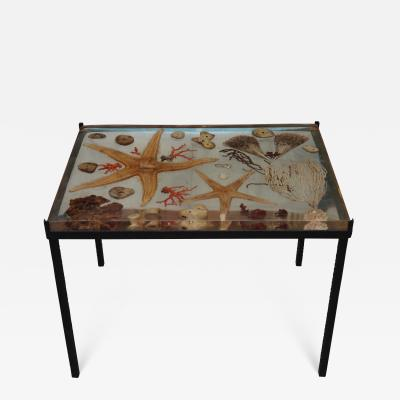 A resine coffee table with marine species Francia 60
