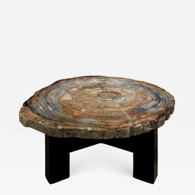 Ado Chale Ado Chale Rare Fossilized Wood Top Coffee Table 1960s