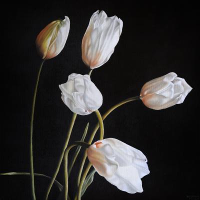 Adriana Molea White Tulips