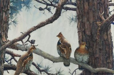 Aiden Lassell Ripley Three Grouse on a Hard Pine