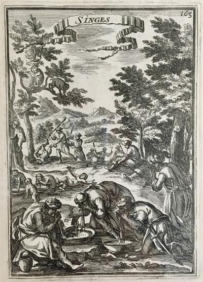 Alain Manesson Mallet Singes Copper Engraving Paris 1683
